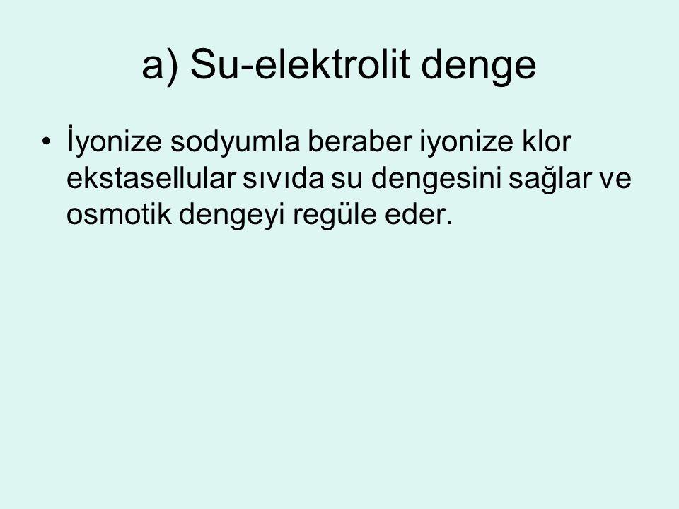 a) Su-elektrolit denge
