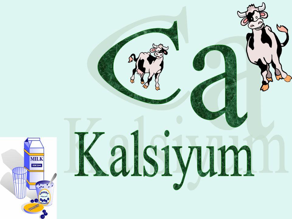 Ca Kalsiyum