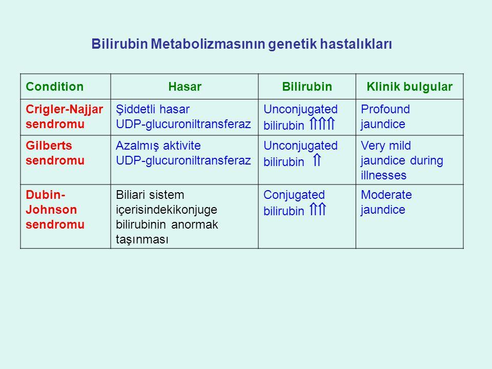 Bilirubin Metabolizmasının genetik hastalıkları
