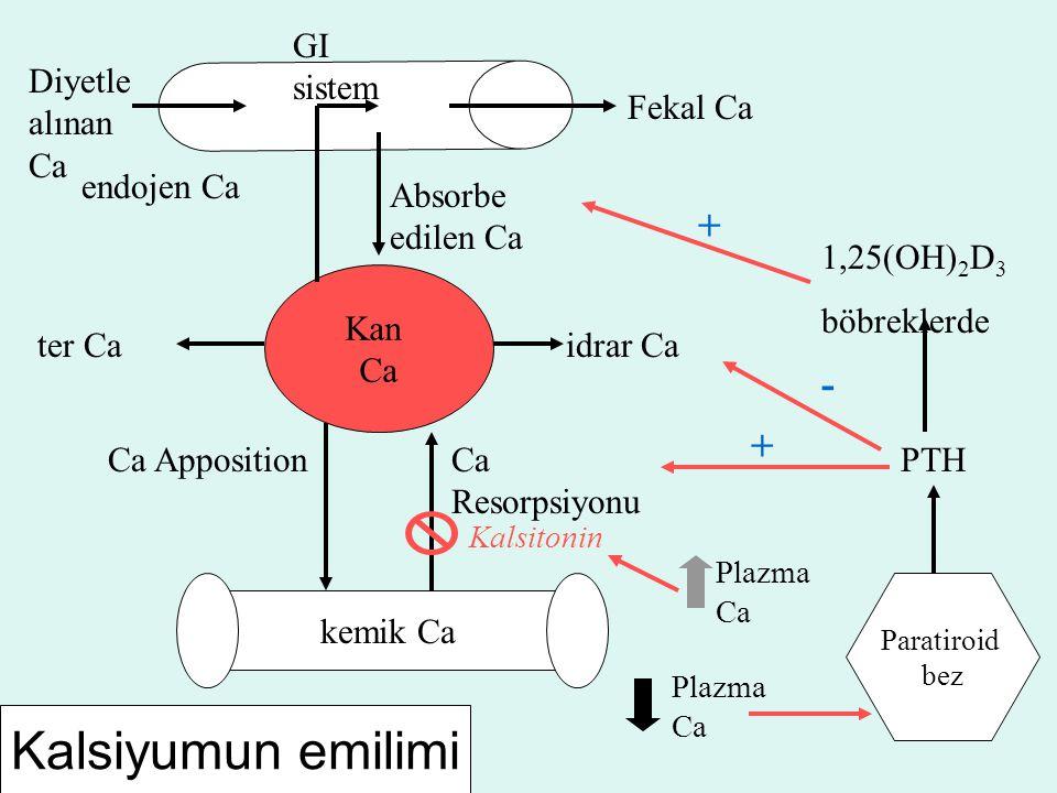 Kalsiyumun emilimi + - + GI sistem Diyetle alınan Ca Fekal Ca