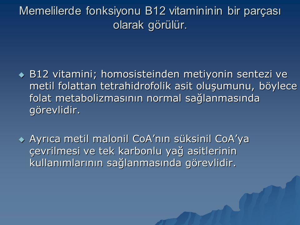 Memelilerde fonksiyonu B12 vitamininin bir parçası olarak görülür.