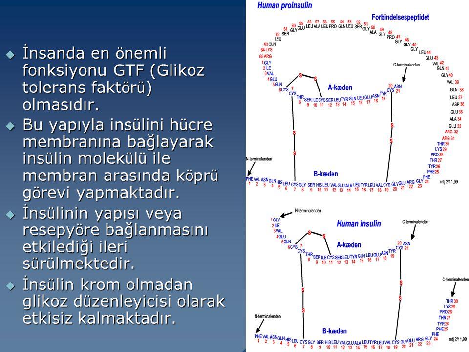 İnsanda en önemli fonksiyonu GTF (Glikoz tolerans faktörü) olmasıdır.