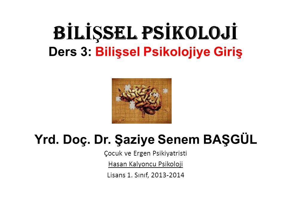 BİLİŞSEL PSİKOLOJİ Ders 3: Bilişsel Psikolojiye Giriş