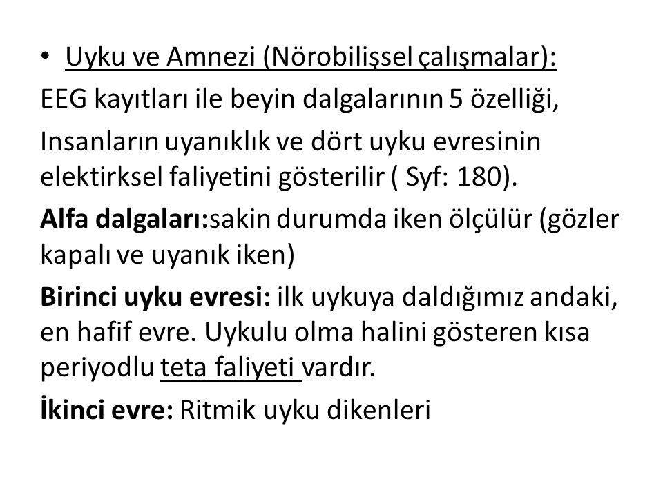 Uyku ve Amnezi (Nörobilişsel çalışmalar):