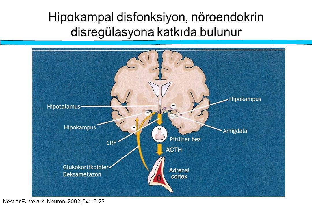 Hipokampal disfonksiyon, nöroendokrin disregülasyona katkıda bulunur