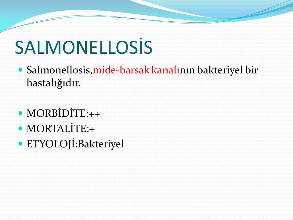 SALMONELLOSİS Salmonellosis,mide-barsak kanalının bakteriyel bir hastalığıdır. MORBİDİTE:++ MORTALİTE:+