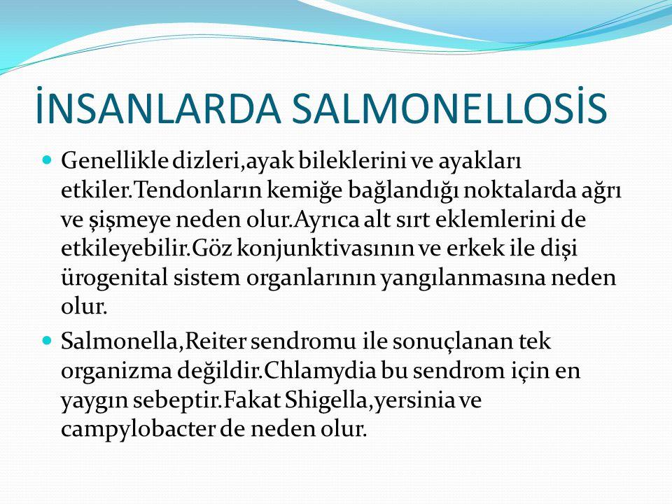 İNSANLARDA SALMONELLOSİS