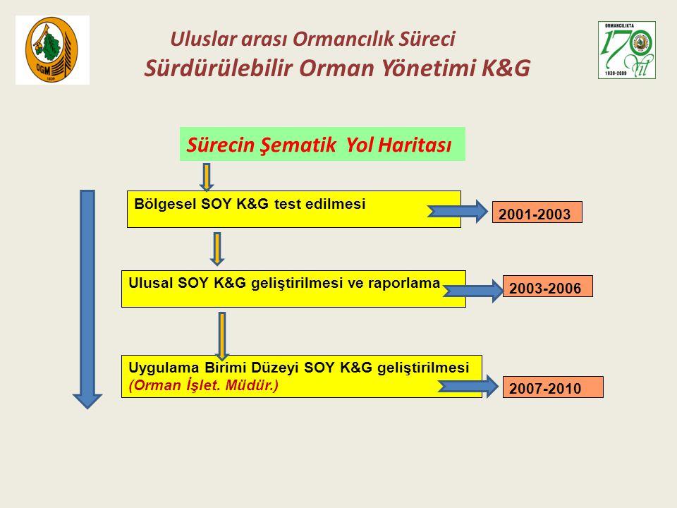 Sürdürülebilir Orman Yönetimi K&G