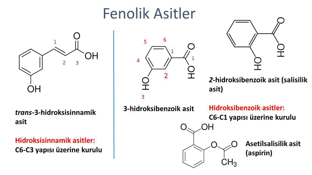 Fenolik Asitler 2 2-hidroksibenzoik asit (salisilik asit)
