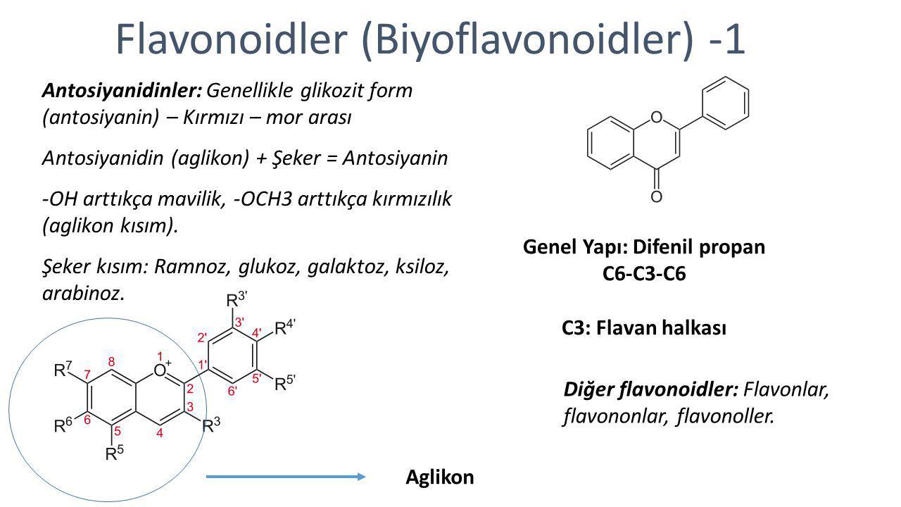 Flavonoidler (Biyoflavonoidler) -1