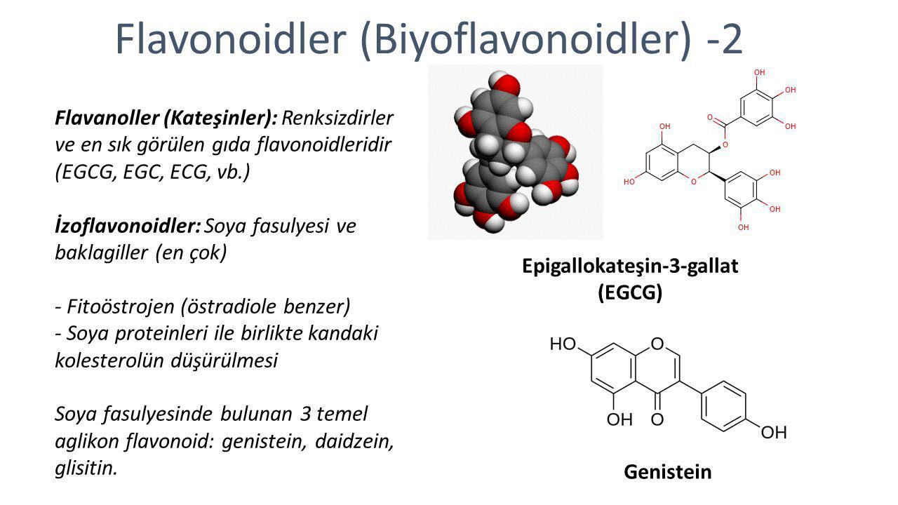 Flavonoidler (Biyoflavonoidler) -2