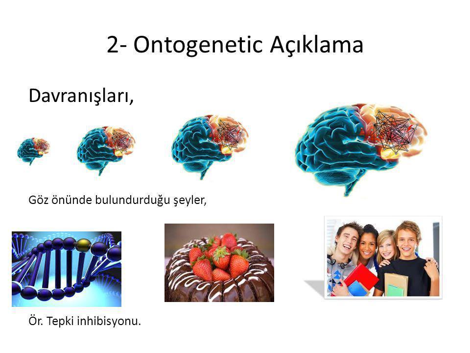 2- Ontogenetic Açıklama