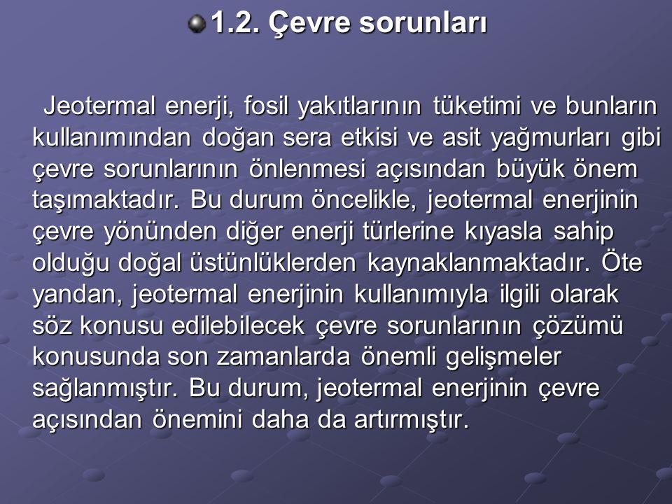 1.2. Çevre sorunları