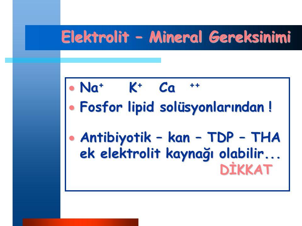 Elektrolit – Mineral Gereksinimi