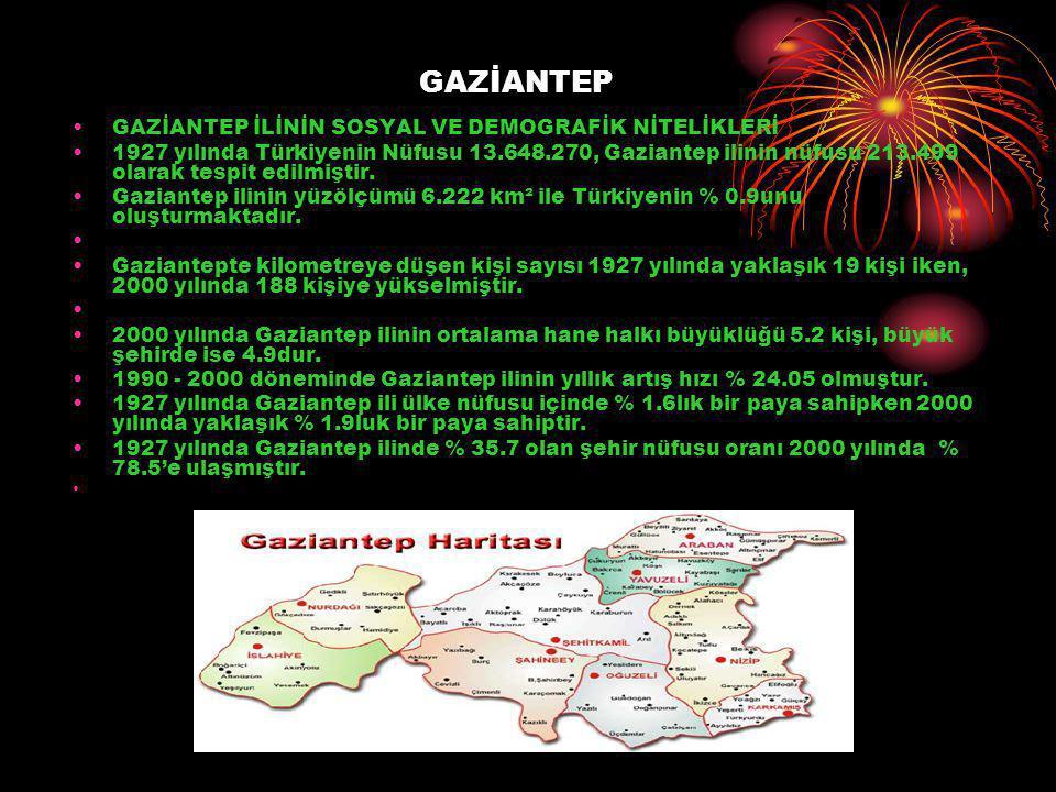 GAZİANTEP GAZİANTEP İLİNİN SOSYAL VE DEMOGRAFİK NİTELİKLERİ