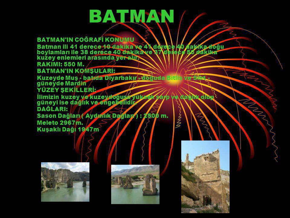 BATMAN BATMAN IN COĞRAFİ KONUMU