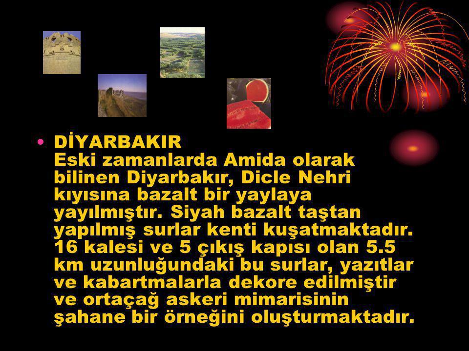 DİYARBAKIR Eski zamanlarda Amida olarak bilinen Diyarbakır, Dicle Nehri kıyısına bazalt bir yaylaya yayılmıştır.