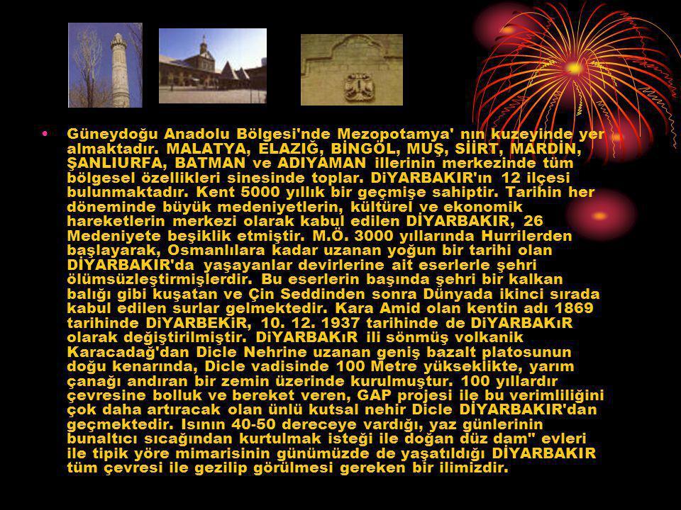 Güneydoğu Anadolu Bölgesi nde Mezopotamya nın kuzeyinde yer almaktadır.
