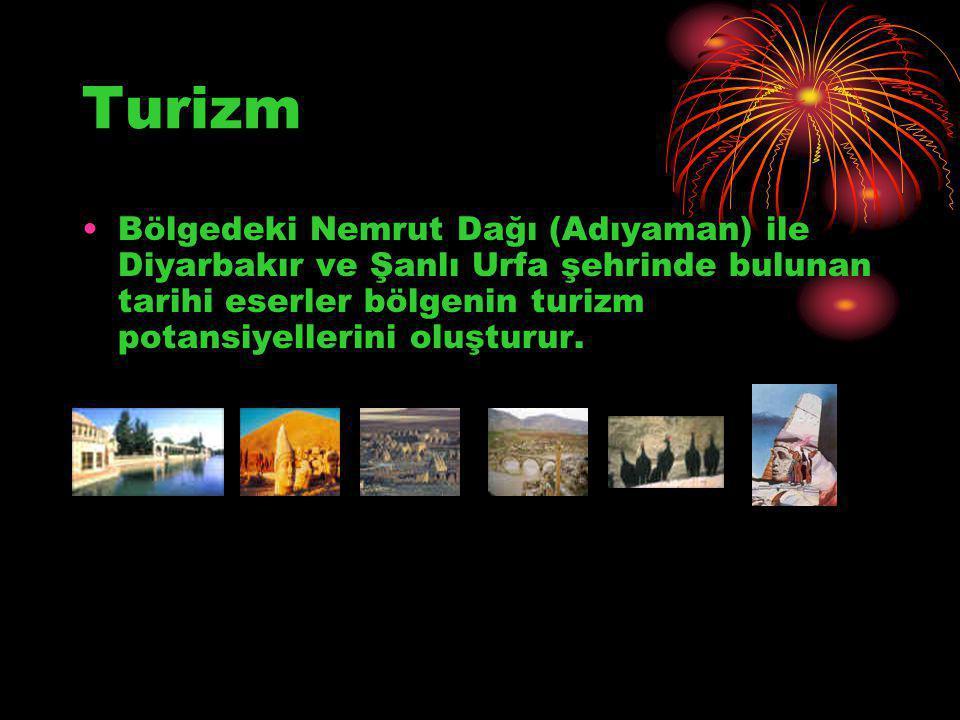Turizm Bölgedeki Nemrut Dağı (Adıyaman) ile Diyarbakır ve Şanlı Urfa şehrinde bulunan tarihi eserler bölgenin turizm potansiyellerini oluşturur.