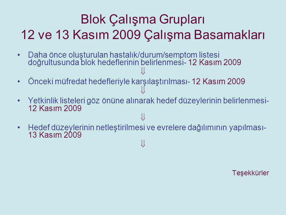 Blok Çalışma Grupları 12 ve 13 Kasım 2009 Çalışma Basamakları