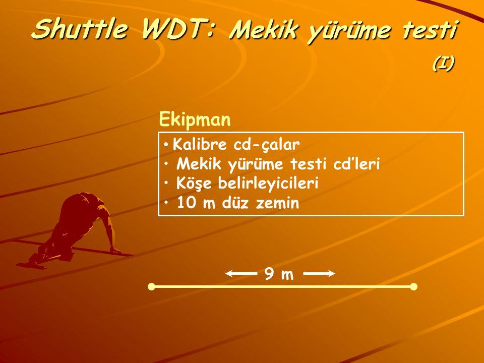 Shuttle WDT: Mekik yürüme testi (I)