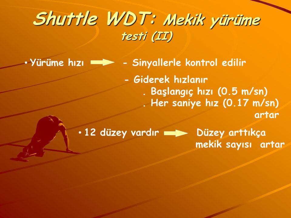 Shuttle WDT: Mekik yürüme testi (II)