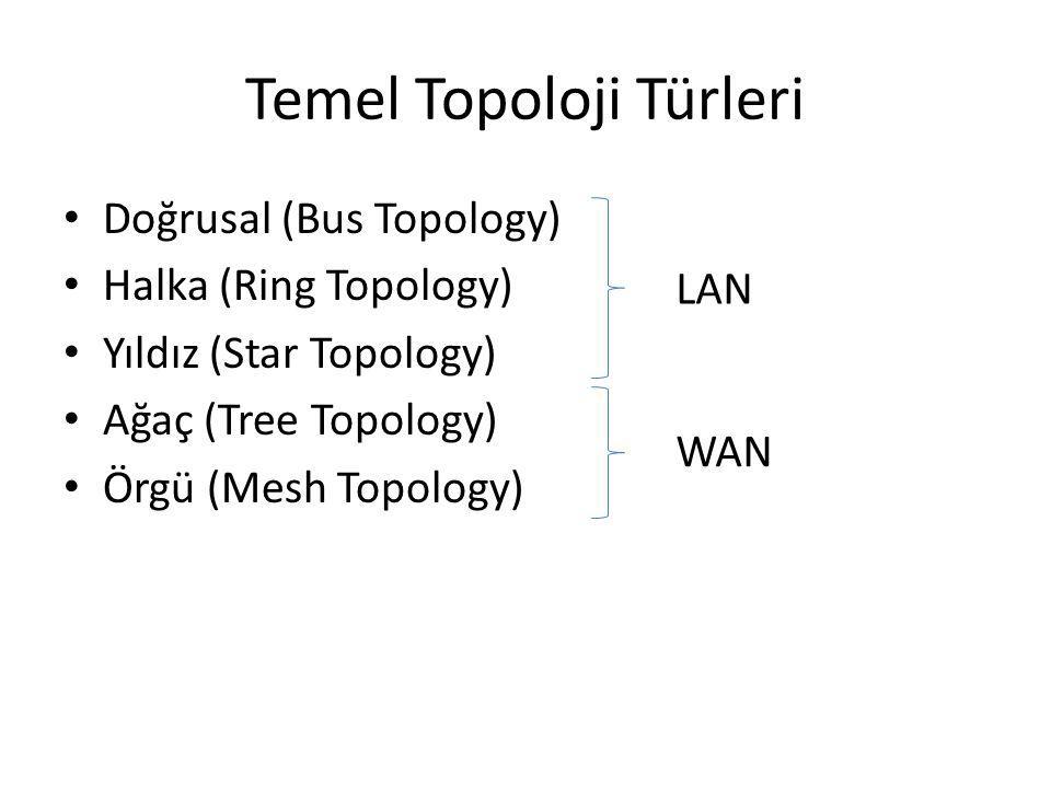 Temel Topoloji Türleri