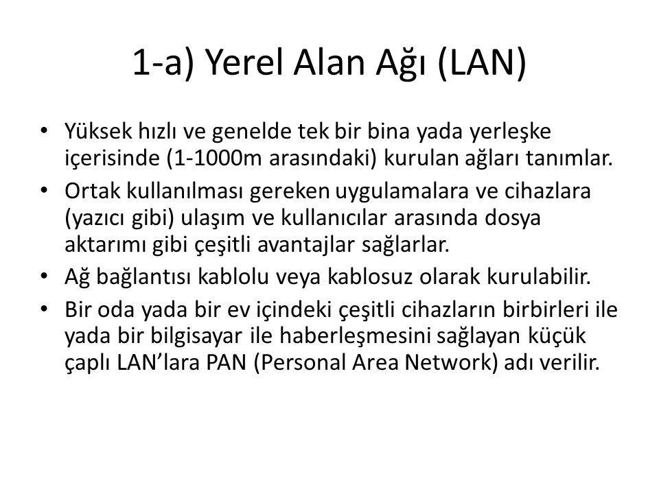 1-a) Yerel Alan Ağı (LAN)