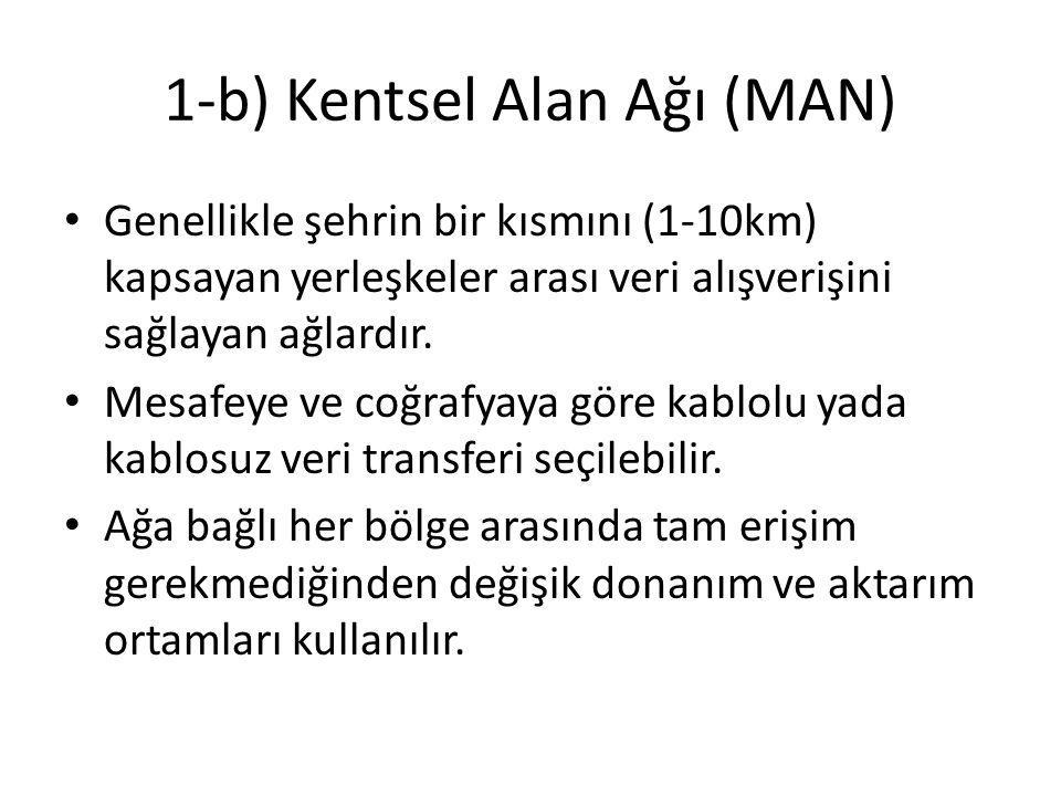 1-b) Kentsel Alan Ağı (MAN)
