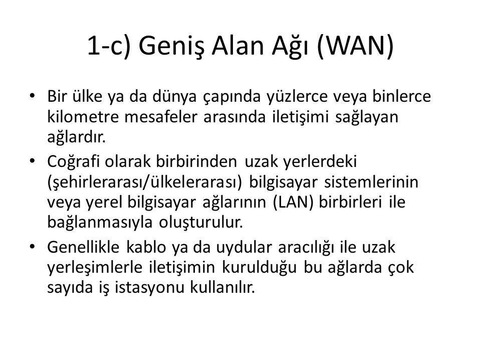 1-c) Geniş Alan Ağı (WAN)
