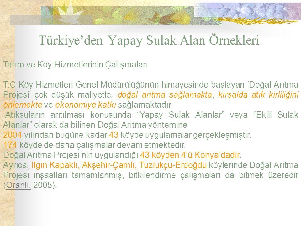 Türkiye'den Yapay Sulak Alan Örnekleri