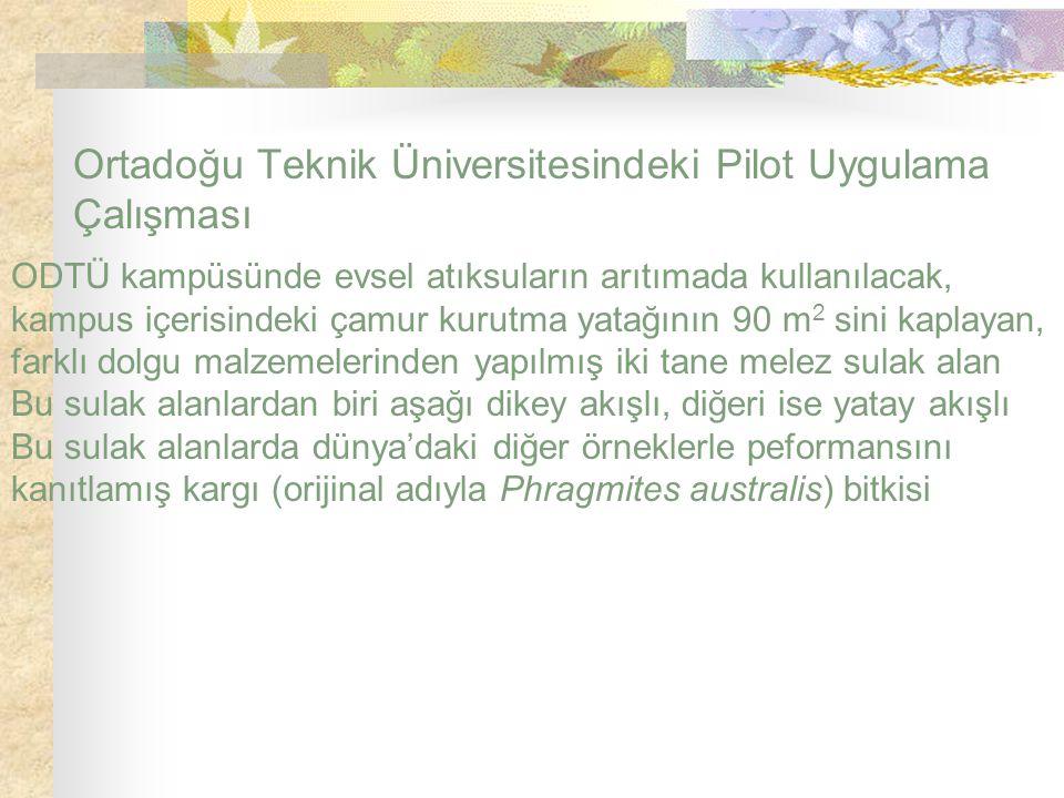 Ortadoğu Teknik Üniversitesindeki Pilot Uygulama Çalışması