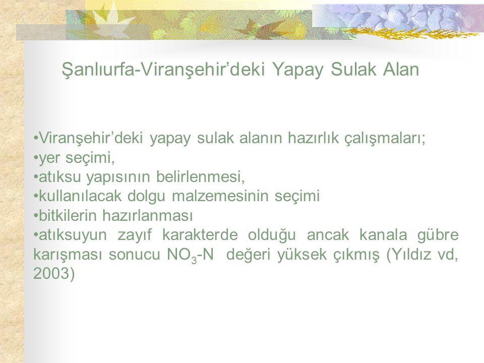 Şanlıurfa-Viranşehir'deki Yapay Sulak Alan