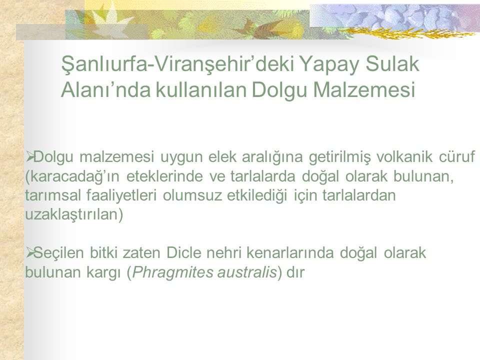 Şanlıurfa-Viranşehir'deki Yapay Sulak Alanı'nda kullanılan Dolgu Malzemesi