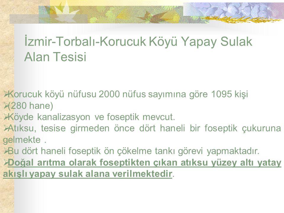 İzmir-Torbalı-Korucuk Köyü Yapay Sulak Alan Tesisi