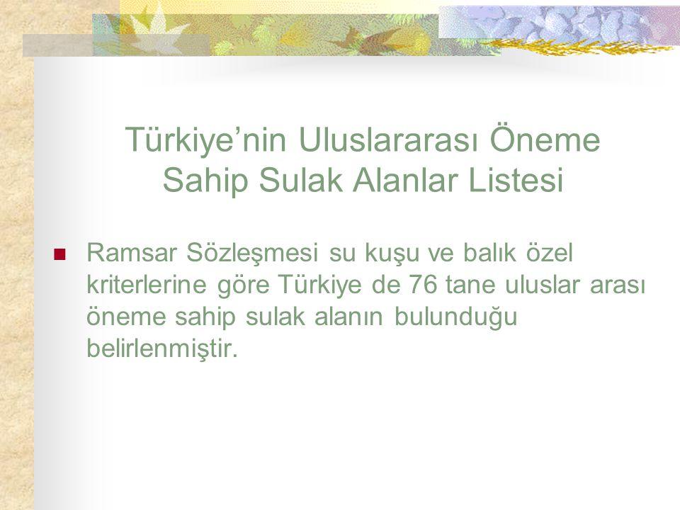 Türkiye'nin Uluslararası Öneme Sahip Sulak Alanlar Listesi