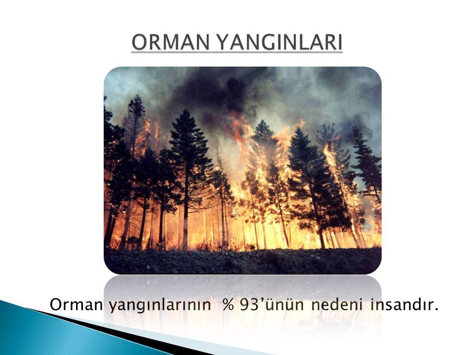 ORMAN YANGINLARI Orman yangınlarının % 93'ünün nedeni insandır.