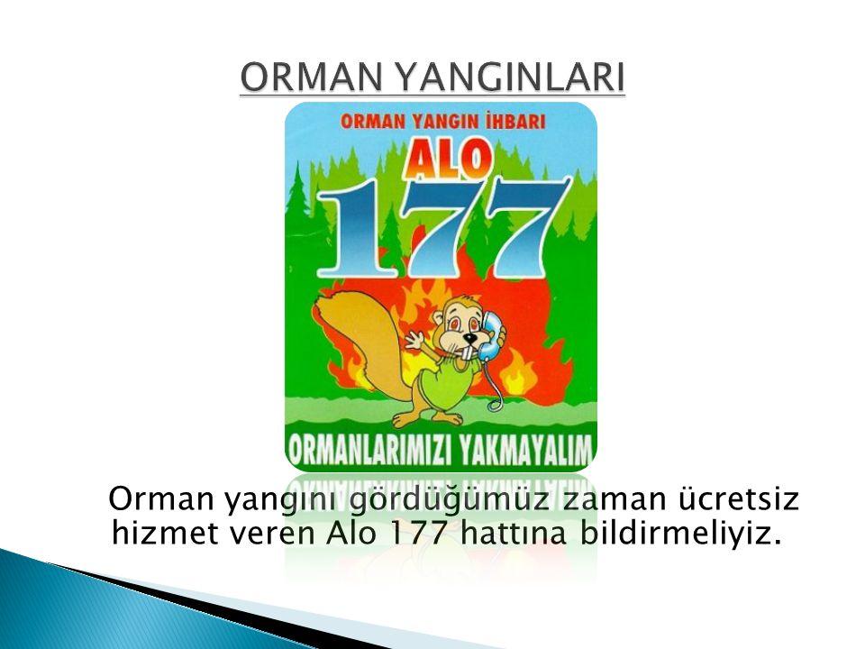 ORMAN YANGINLARI Orman yangını gördüğümüz zaman ücretsiz hizmet veren Alo 177 hattına bildirmeliyiz.