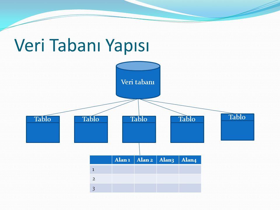 Veri Tabanı Yapısı Veri tabanı Tablo Tablo Tablo Tablo Tablo Alan 1