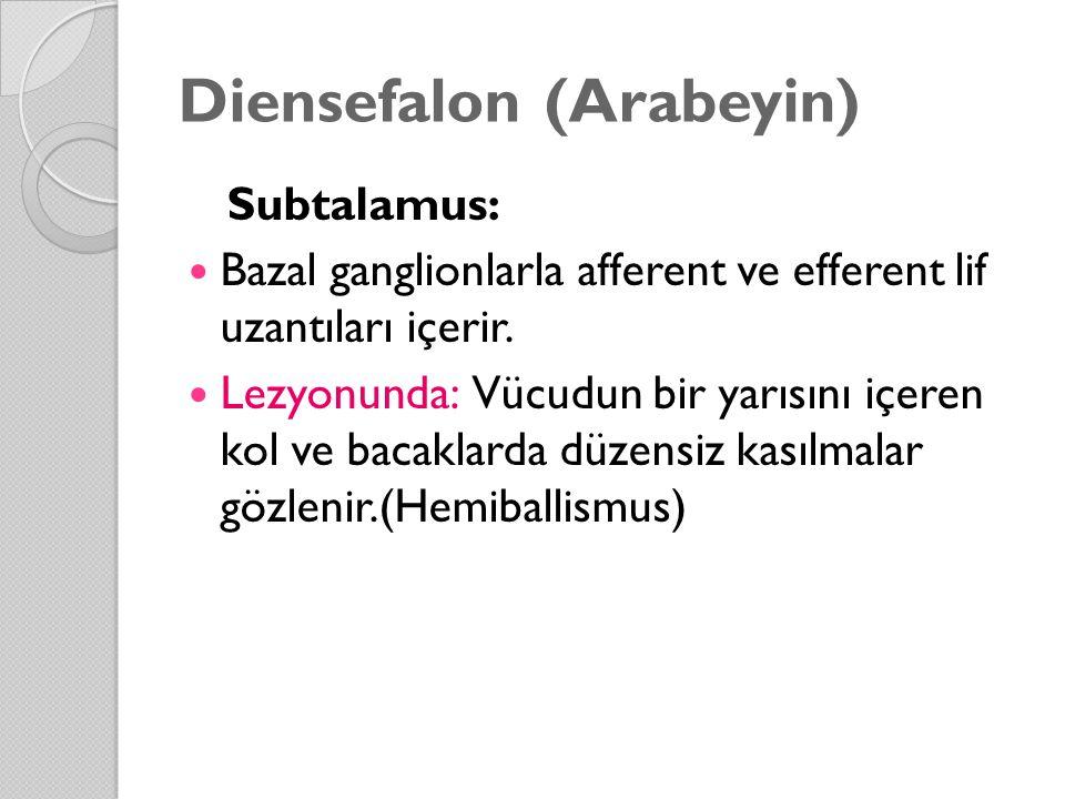 Diensefalon (Arabeyin)