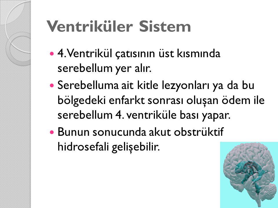 Ventriküler Sistem 4. Ventrikül çatısının üst kısmında serebellum yer alır.