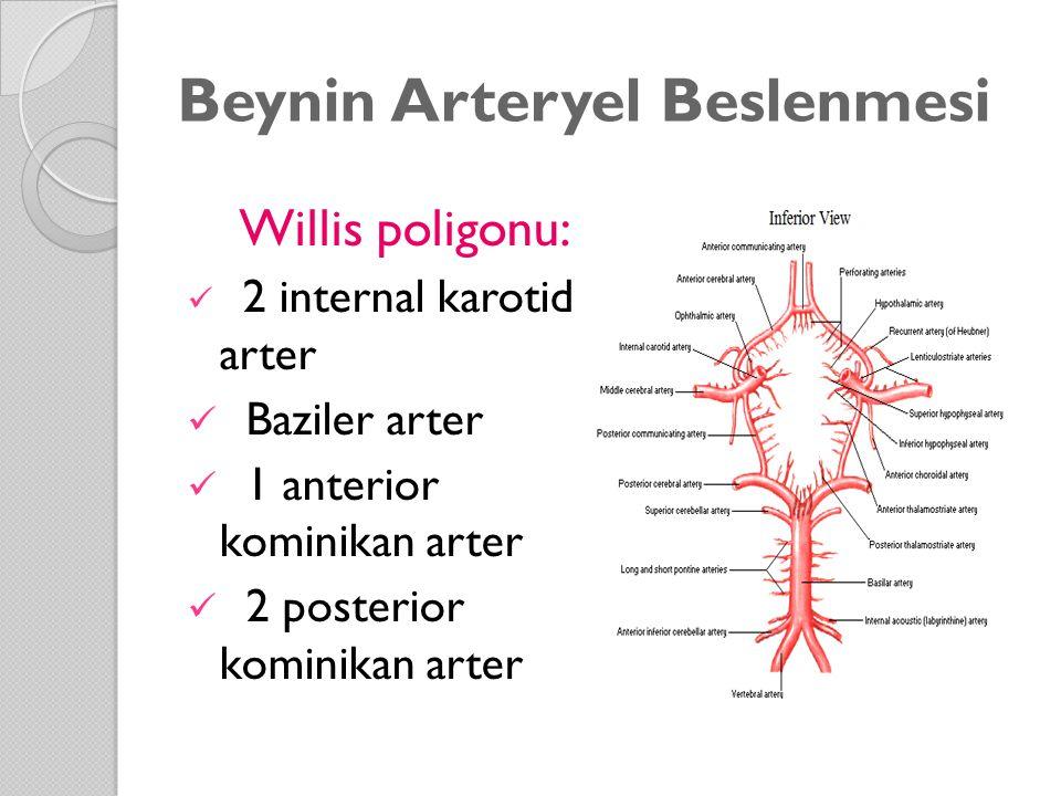 Beynin Arteryel Beslenmesi