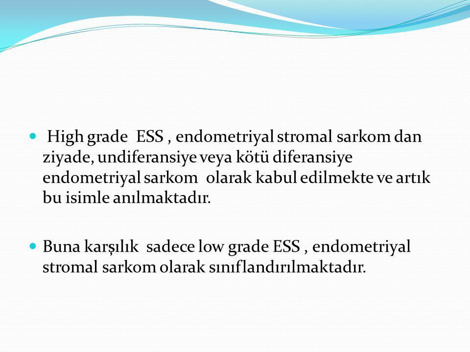 High grade ESS , endometriyal stromal sarkom dan ziyade, undiferansiye veya kötü diferansiye endometriyal sarkom olarak kabul edilmekte ve artık bu isimle anılmaktadır.