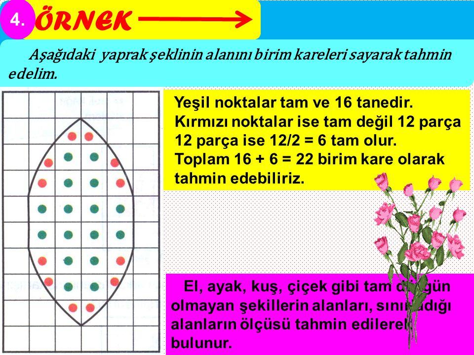 ÖRNEK 4. Aşağıdaki yaprak şeklinin alanını birim kareleri sayarak tahmin edelim. Yeşil noktalar tam ve 16 tanedir.