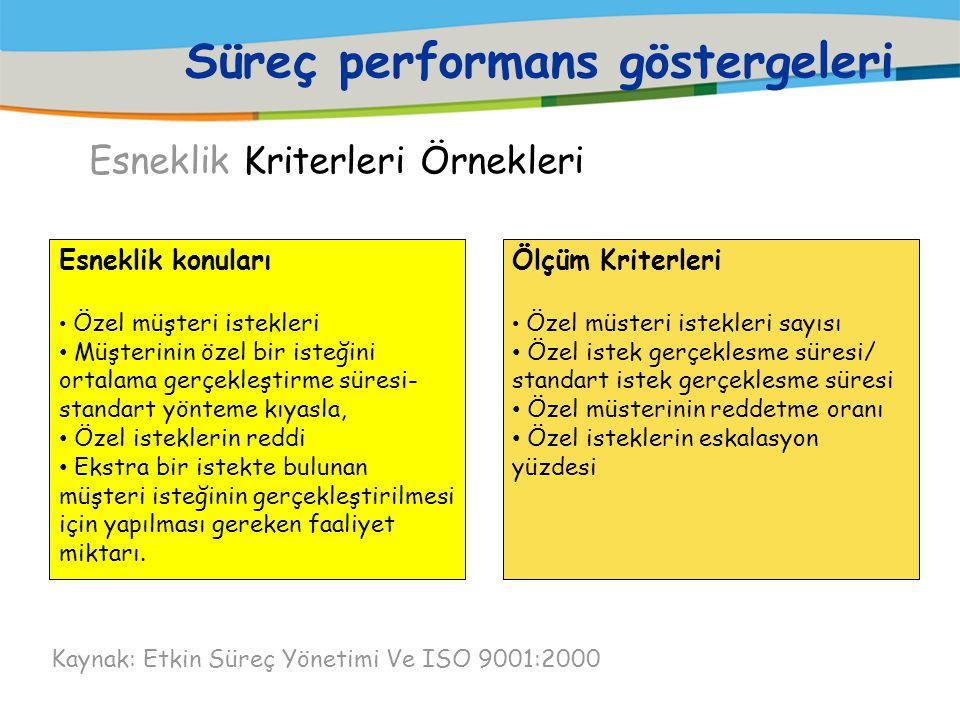 Süreç performans göstergeleri