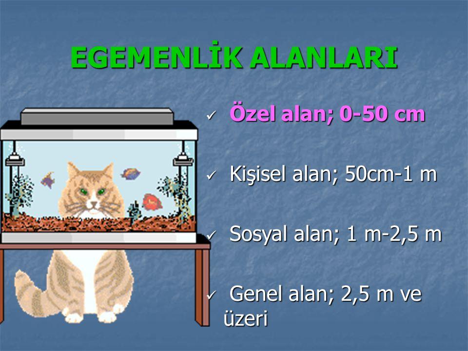 EGEMENLİK ALANLARI Özel alan; 0-50 cm Kişisel alan; 50cm-1 m