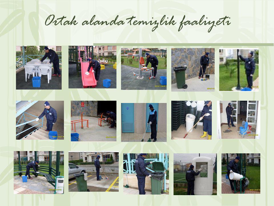Ortak alanda temizlik faaliyeti