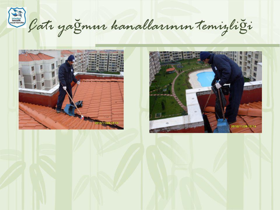 Çatı yağmur kanallarının temizliği