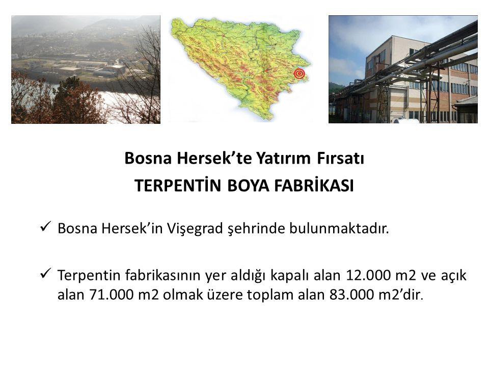 Bosna Hersek'te Yatırım Fırsatı TERPENTİN BOYA FABRİKASI