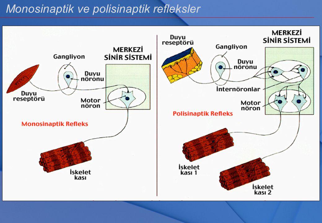Refleks Reseptörlerin uyarılması ile effektör organlarda yaratılan istek dışı aktivitedir